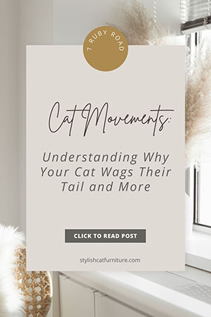 Cat Movements Understanding Why Your Cat Wags Their Tail and More